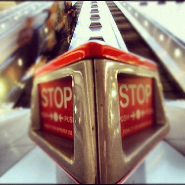 www.flickr.com:photos:victoriapeckham:7790776402:
